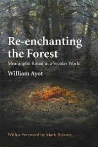 Re enchanting the Forest